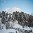 Winter landscape with snowed trees, road and wooden fence. Hill covered by snow at countryside. Cold winter day with blue sky. Traditional Carpathian mountains village scenery, Romania, Moeciu. — Stock Photo #61919881