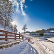 Narrow road covered by snow at countryside. Winter landscape with snowed trees, road and wooden fence. Cold winter day at countryside. Traditional Carpathian mountains village scenery, Romania — Stock Photo #62553013