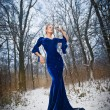 Lovely young lady in elegant blue dress posing in winter scenery, royal look. Fashionable blonde woman with forest in background, outdoor shot. Glamorous fair hair female in nature - princess style — Stock Photo #65914651