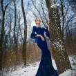 Lovely young lady in elegant blue dress posing in winter scenery, royal look. Fashionable blonde woman with forest in background, outdoor shot. Glamorous fair hair female in nature - princess style — Stock Photo #65914661