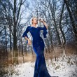 Lovely young lady in elegant blue dress posing in winter scenery, royal look. Fashionable blonde woman with forest in background, outdoor shot. Glamorous fair hair female in nature - princess style — Stock Photo #65914667