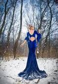 Back side view of lady in long blue dress posing in winter scenery, royal look. Fashionable blonde woman with forest in background, outdoor shot. Glamorous fair hair female in nature - princess style — Stock Photo