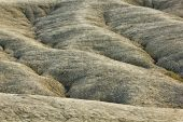 Waves of dry mud — Stock Photo