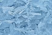 Beautiful frost patterns on glass — ストック写真