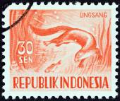 INDONESIA - CIRCA 1956: A stamp printed in Indonesia shows Smooth-coated otter (Lutrogale perspicillata), circa 1956. — Stock Photo