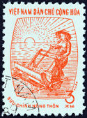 NORTH VIETNAM - CIRCA 1962: A stamp printed in North Vietnam shows woman with rice planter, circa 1962. — Stock Photo