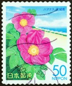 "JAPAN - CIRCA 2007: A stamp printed in Japan from the ""Prefectural Stamps - Kanto. Flowers "" issue shows Rosa rugosa, circa 2007. — Stock Photo"