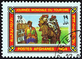 "AFGHANISTAN - CIRCA 1984: A stamp printed in Afghanistan from the ""World Tourism Day "" issue shows camel driver and camel, circa 1984. — 图库照片"