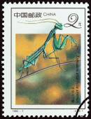 "CHINA - CIRCA 1992: A stamp printed in China from the ""19th International Entomology Congress, Beijing - Insects "" issue shows Chinese mantis (Tenodera aridifolia sinensis), circa 1992. — Stock Photo"