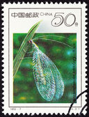 "CHINA - CIRCA 1992: A stamp printed in China from the ""19th International Entomology Congress, Beijing - Insects "" issue shows Lacewing (Chrysopa septempunctata), circa 1992. — Stock Photo"