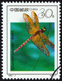 "CHINA - CIRCA 1992: A stamp printed in China from the ""19th International Entomology Congress, Beijing - Insects "" issue shows Dragonfly (Sympetrum croceolum), circa 1992. — Stock Photo"