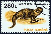 "ROMANIA - CIRCA 1993: A stamp printed in Romania from the ""Animals "" issue shows Egyptian mongoose (Herpestes ichneumon), circa 1993. — Stockfoto"