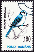 "ROMANIA - CIRCA 1993: A stamp printed in Romania from the ""Birds "" issue shows Azure tit (Parus cyanus), circa 1993. — Stock Photo"