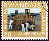 """RWANDA - CIRCA 1975: A stamp printed in Rwanda from the """"Year of Increased Production """" issue shows loading Douglas DC-8F Jet Trader, circa 1975. — Stock Photo"""