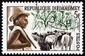 """Dahomej - około 1963: Znaczek wydrukowany w Dahomej z """"Dahomej plemiona"""" pokazuje wydania Peuhl stado chłopiec, około 1963. — Zdjęcie stockowe"""
