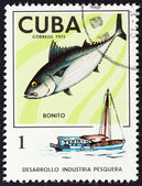 "CUBA - CIRCA 1975: A stamp printed in Cuba from the ""Cuban Fishing Industry "" issue shows Skipjack tuna (Katsuwonus pelamis) and fishing boat, circa 1975. — Foto de Stock"