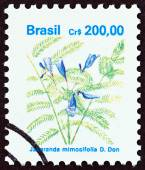 "BRAZIL - CIRCA 1990: A stamp printed in Brazil from the ""Flowers "" issue shows Jacaranda mimosifolia, circa 1990. — Stock Photo"