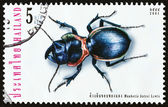"THAILAND - CIRCA 2001: A stamp printed in Thailand from the ""Insects "" issue shows Mouhotia batesi, circa 2001. — Stock Photo"
