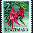 Постер, плакат: NEW ZEALAND CIRCA 1960: A stamp printed in New Zealand shows Kowhai Ngutu kaka Kaka Beak circa 1960