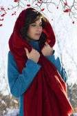 Girl dressed in red scarf and blue coat over the snowy park and tree with berries — Foto de Stock