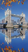 Tower Bridge with autumn leaves in  London, England — Stock Photo