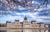 Parlement tijdens de lentetijd in Boedapest, Hongarije — Stockfoto