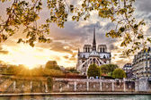 Notre Dame cathedral in spring time, Paris, France — Stockfoto