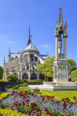 Paris, Notre Dame cathedral with blossomed tree, France — Stock Photo