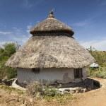 Traditional Ethiopian house. Karat Konso. Ethiopia. — Stock Photo #51900691