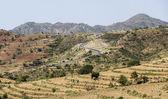 African landscape. Omo Valley. Ethiopia. — Stock Photo