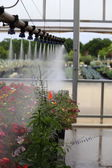 Watering Greenhouse — Foto Stock