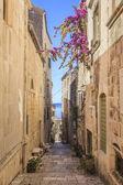 科尔丘拉岛、 科尔丘拉岛在克罗地亚在狭窄的街道 — 图库照片
