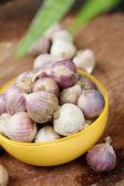 Fresh organic garlic — Stock Photo