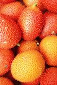 Baby Jackfruit in the market — Foto de Stock