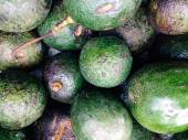 Fresh avocados background — Stock fotografie
