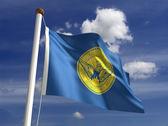 Atlanta City flag — Stockfoto