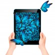 Butterfly flying out from tablet computer — Stock Photo #53994903