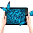 Butterfly flying out from tablet computer — Stock Photo #53995075