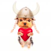 Lover valentine  puppy dog with a red heart — Stock Photo