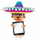Dog wearing a mexican hat with tablet pc — Stock Photo