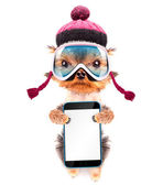 Dog  dressed as skier with phone — Stock Photo
