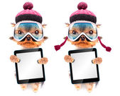 Dog  dressed as skier with tablet pc — 图库照片