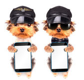 Dog  dressed as pilot with phone — Stock Photo