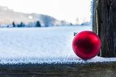 Wintry christmas — Stock Photo