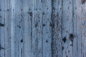 Frozen wood background — Stock Photo