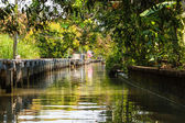 Green Canal — Stock Photo