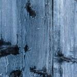 Frozen wood texture — Stock Photo #60396539