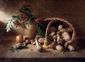 Stillife with Mushrooms — Stock Photo