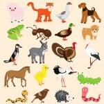Cartoon animal set — Stock Vector #70502393