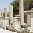 The ruins of the ancient city of Ephesus, located on the territory of modern Turkey — Stock Photo #51802633
